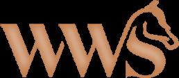 modern logo 2